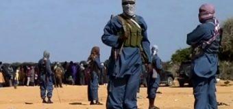 Xarakada AL-shabaab oo Degmada Bu'aale ee G/J/dhexe ku Toogtey Meel Fagaare ah Afar Dhalinyaro ah.