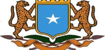 Shirkadaha Isgaarsiinta Ee Somalia Oo La Faray In Ay Isku Furaan Wicitaanadooda Gudaha.